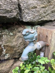 bunny waterfaucet