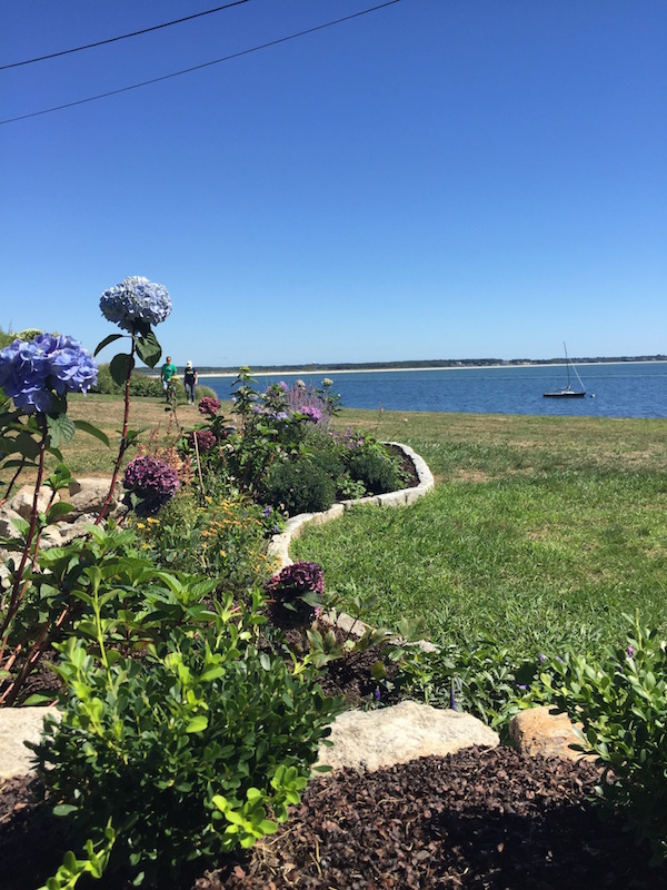 stonington Garden Club Gardens by the Sea