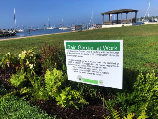 Rain garden sign in Stonington Borough